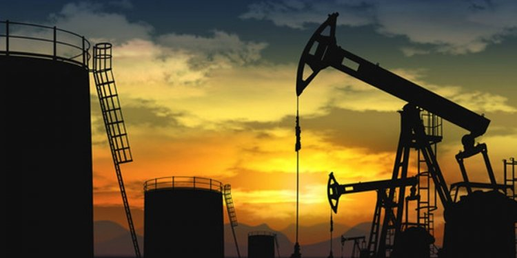 Crude Oil Prices Plunged in
